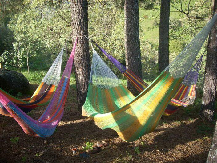 hamacas en el bosque
